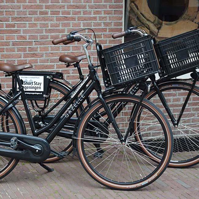 Cycling and bike rental Wageningen - Short Stay Wageningen